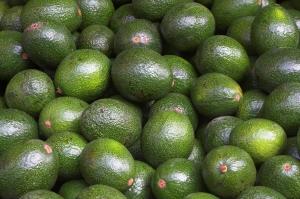 bigstock-avocado-35610743