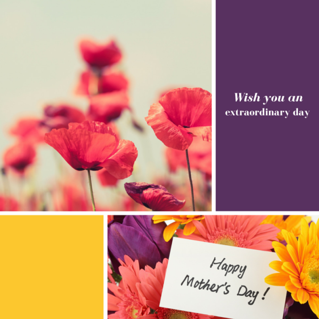 WordPress_MothersDay